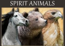 Animals In Your Spiritual Dreams