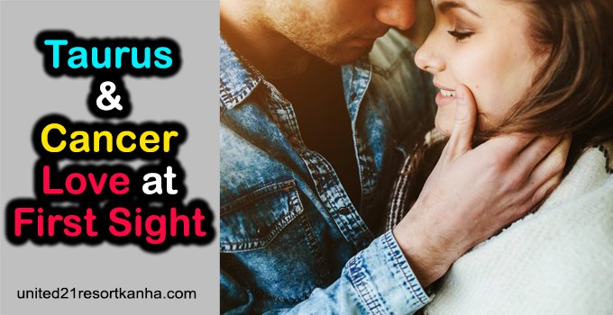 Taurus and Cancer Love at First Sight (Things to Know)
